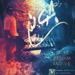 کاور آهنگ Peyman Kakavand - Delo Joonam Fadashe