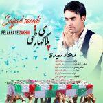 کاور آهنگ Sajad Saeedi - Pelak Haye Zakhmi