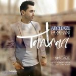 کاور آهنگ Abolfazl Farahani - Tanhaei