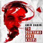 کاور آهنگ Amin Habibi - To Donyamo Avaz Kardi
