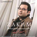 کاور آهنگ Amir Khamse - Zakhm
