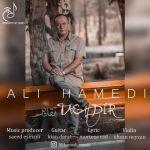 کاور آهنگ Ali Hamedi - Taghdir