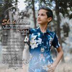 کاور آهنگ AmirMohammad Nodehi - Shabikhoon
