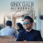 کاور آهنگ Ali Norouzi - Sinix Galb