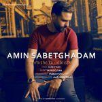 کاور آهنگ Amin Sabet Ghadam - Nemishe Ke Nemishe