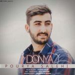 کاور آهنگ Pourya Salehi - Donya