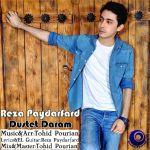 کاور آهنگ Reza Paydarfard - Dustet Daram