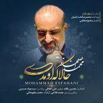 کاور آهنگ Mohammad Esfahani - Hala Ke Umadi