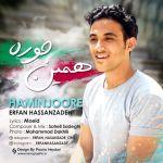 کاور آهنگ Erfan Hasanzade - Haminjoore