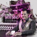 کاور آهنگ Saeed Arab - Padideh