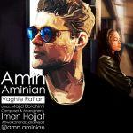 کاور آهنگ Amin Aminian - Vaghte Raftan