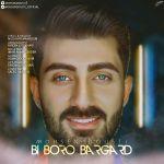 کاور آهنگ Mohsen Dousti - Bi Boro Bargard