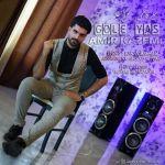 کاور آهنگ Amir Kazemi - Gole Yas
