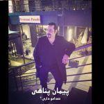کاور آهنگ Peyman Panahi - Can You Hear My Voice
