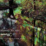 کاور آهنگ Saeed4c - Beshno Az Ney