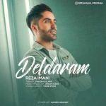 کاور آهنگ Reza Imani - Deldaram