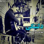 کاور آهنگ Ahmad Hoseini - Deltangi