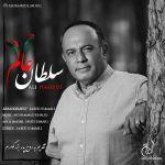 کاور آهنگ Ali Hamedi - Soltane Alam