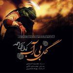 کاور آهنگ Kamal Al Ahmad - Gole Bi Ab