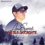کاور آهنگ Amir Saeedi - Mesle Gozashte