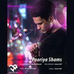 کاور آهنگ Pooriya Shams - Ehsasam