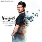 کاور آهنگ Shahin Varjini - Navazesh