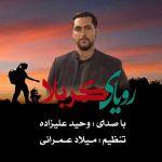 کاور آهنگ Vahid Alizadeh - Royaye Karbala