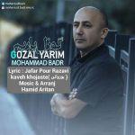 کاور آهنگ Mohammad badr - Gozal yarim
