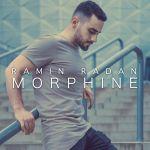 کاور آهنگ Ramin Radan - Morphin