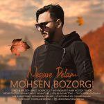 کاور آهنگ Mohsen Bozorgi - Negare Delam