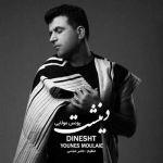 کاور آهنگ Younes Moulaie - Dinesht