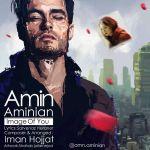 Amin Aminian - Image Of You
