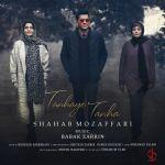 کاور آهنگ Shahab Mozaffari - Tanhaye Tanha