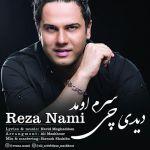 کاور آهنگ Reza Nami - Didi Chi Saram Oumad