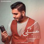 کاور آهنگ Amir Modarresi - Hamishegi