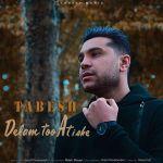 کاور آهنگ Tabesh - Delam Too Atishe