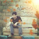 کاور آهنگ Younes Moulaie - Yadet Nileh