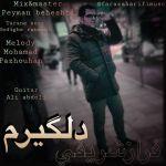 کاور آهنگ Faraz Sharifi - Delgiram