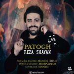 کاور آهنگ Reza Shayan - Patogh