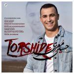 کاور آهنگ Hossein Moezi - Torshide