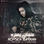 Mohsen Barkan - Tanhaei Behtare