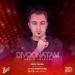 کاور آهنگ Saeid Taleshi - Divoonatam