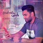 کاور آهنگ Mohsen Barkan - Kheili Hasasam