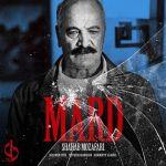 کاور آهنگ Shahab Mozaffari - Mard (Del Series)