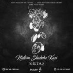 کاور آهنگ Shetab - Nistam Shabihe Kasi
