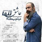 کاور آهنگ Meysam Niknam - Asheghe Tanha