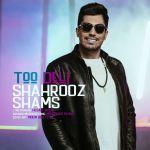 کاور آهنگ Shahrooz Shams - Too Deli