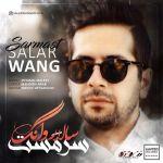 کاور آهنگ Salar Wang - Sarmast