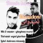 کاور آهنگ Hamin Band - Nemidoni
