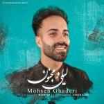 کاور آهنگ Mohsen Ghaderi - Leily O Majnoon